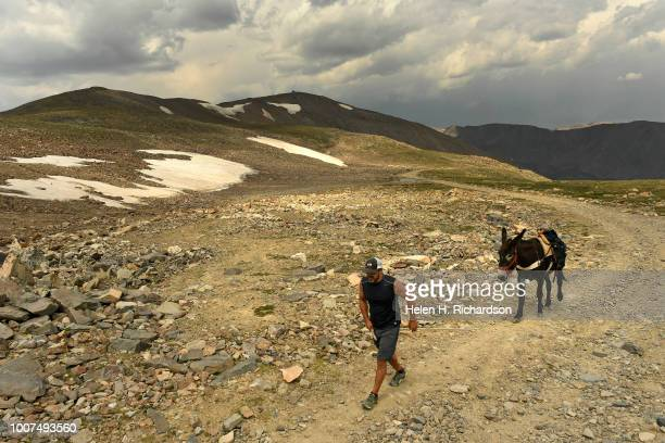 Tim Scaturro of Lakewood leads his donkey Charlie to the summit of Mosquito Pass as they take part in the 70th annual World Championship Pack Burro...