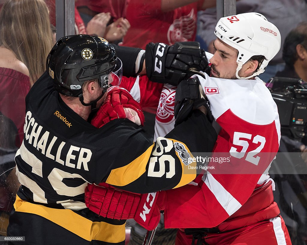 Tim Schaller #59 of the Boston Bruins gets into a scrum with Jonathan Ericsson #52 of the Detroit Red Wings during an NHL game at Joe Louis Arena on January 18, 2017 in Detroit, Michigan. The Wings defeated the Bruins 6-5 in a shoot-out.