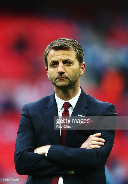 Tim Sherwood manager of Aston Villa looks dejected in defeat after the FA Cup Final between Aston Villa and Arsenal at Wembley Stadium on May 30,...