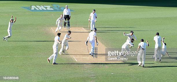Tim Southee of New Zealand catches out Steven Finn of England during day four of the Third Test match between New Zealand and England at Eden Park on...