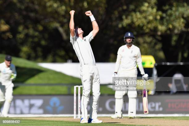 Tim Southee of New Zealand celebrates after dismissing James Vince of England during day one of the Second Test match between New Zealand and England...
