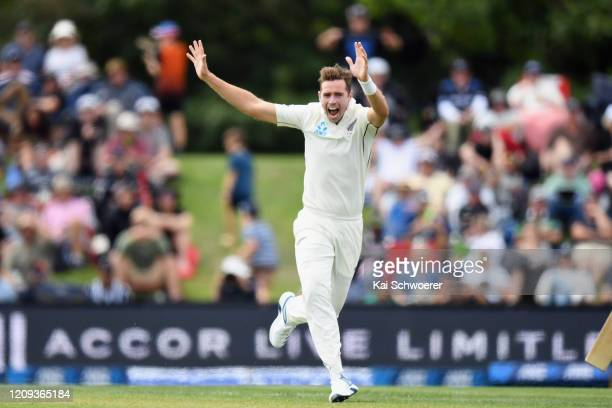 Tim Southee of New Zealand celebrates after dismissing Virat Kohli of India during day one of the Second Test match between New Zealand and India at...