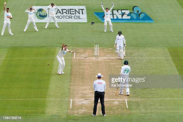 Tim Southee of New Zealand unsuccessfully appeals for the wicket of Abid Ali of Pakistan during day four of the Second Test match in the series...