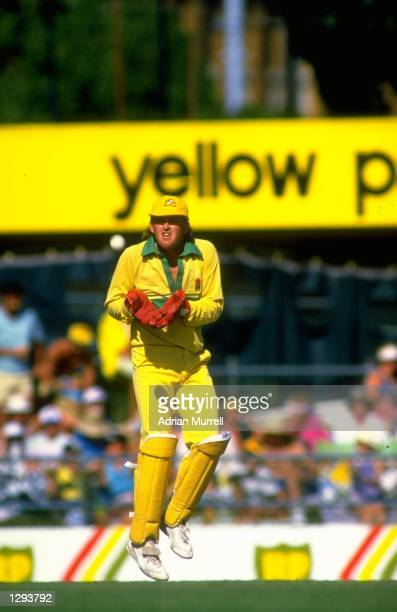 Tim Zoehrer of Australia in action during the Benson and Hedges World Series match against England at Woolloongabba in Brisbane Australia Mandatory...