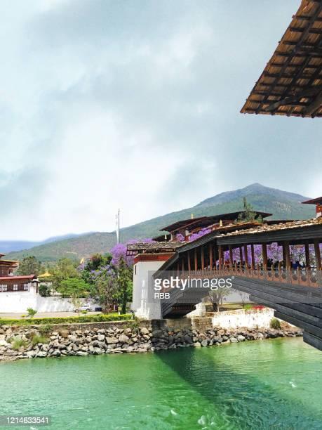 timber bridge in bhutan - paro stock pictures, royalty-free photos & images