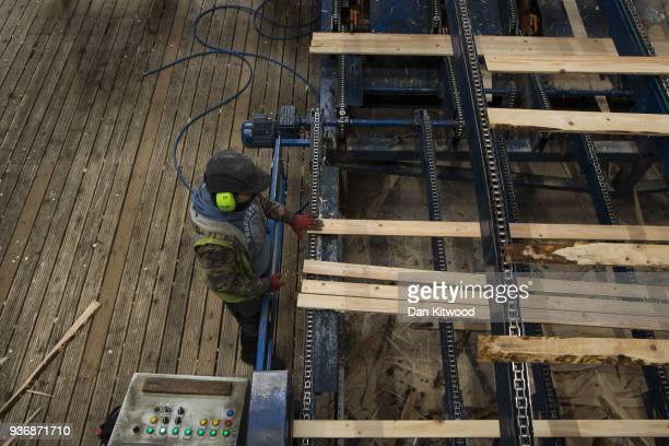 Timber is sorted at AJ Scott sawmill on March 22 2018 in Doddington England The Doddington North Afforestation project has begun with the planting of...