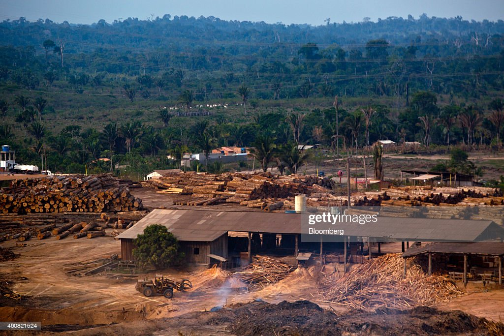 Timber is stacked in piles at a sawmill in Anapu, Brazil, on Thursday, Dec. 18, 2014. The rate of deforestation Brazil's Amazon rain forest dropped 18 percent over the last year, according to a report by the country's environment minister in November. Photographer: Dado Galdieri/Bloomberg via Getty Images