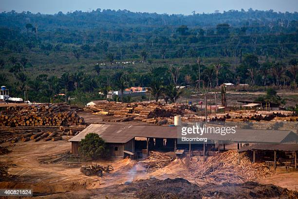 Timber is stacked in piles at a sawmill in Anapu Brazil on Thursday Dec 18 2014 The rate of deforestation Brazil's Amazon rain forest dropped 18...