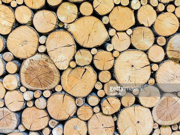 Timber woodpile