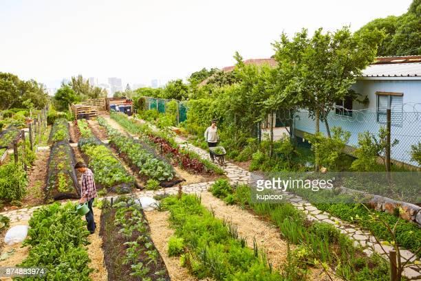 Tijd en moeite groeit een tuin