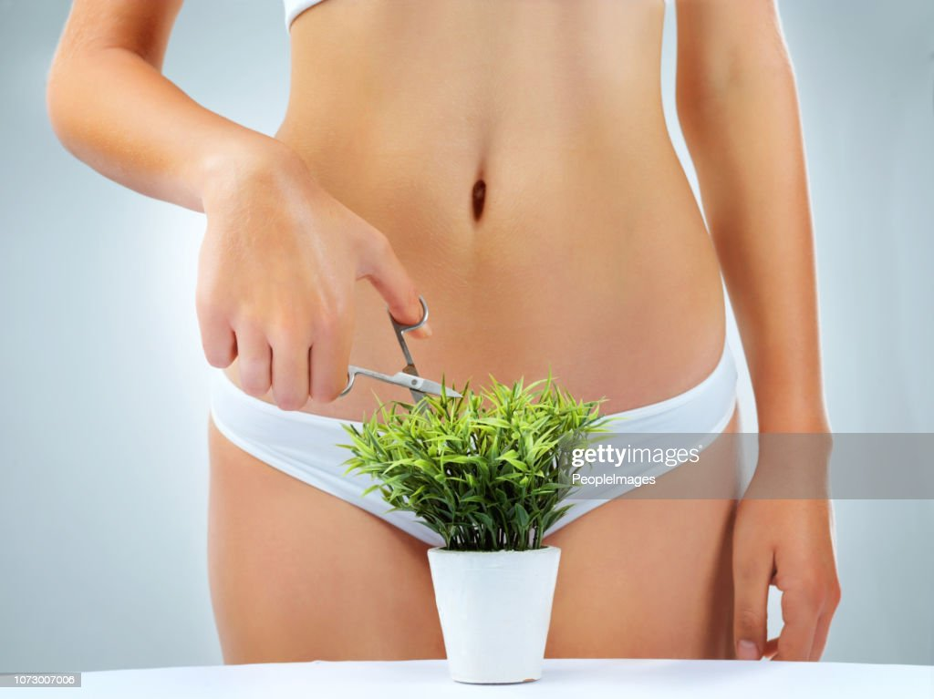 Time for a little ladyscaping : Stock Photo