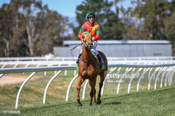 Time Ford ridden by Lewis German returns to scale after winning the Ord's Motorcycles BM58 Handicap at Ararat Racecourse on December 11 2018 in...