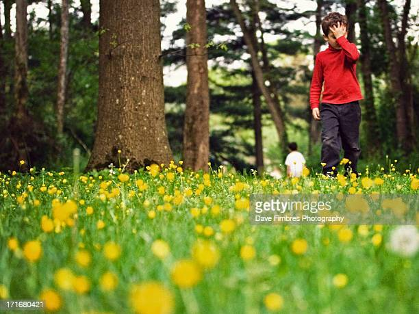 time has passed (boy in woods) - mclean virginia stock pictures, royalty-free photos & images