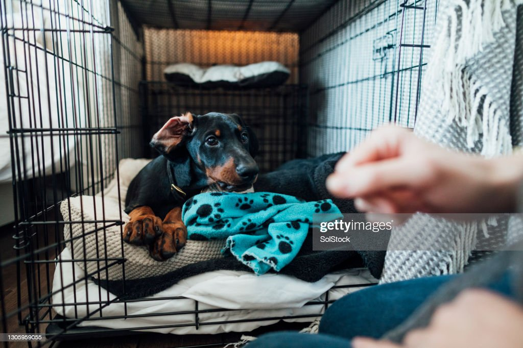 Time to Get Up! : Stock Photo