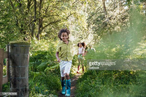 time together as a family - woodland stock pictures, royalty-free photos & images