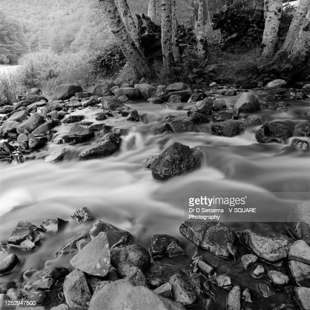 time-exposure photograph of a stream - deschutes national forest stock pictures, royalty-free photos & images
