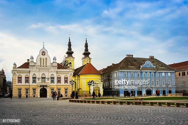 timisoara - cathedral stock pictures, royalty-free photos & images