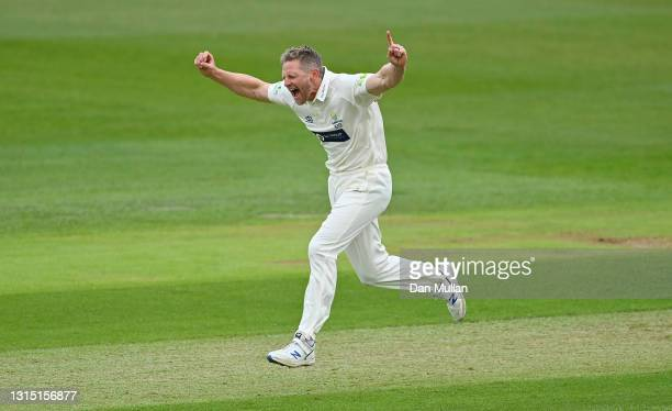 Timm van der Gugten of Glamorgan celebrates bowling Daniel Bell-Drummond of Kent during day one of the LV= County Championship match between...