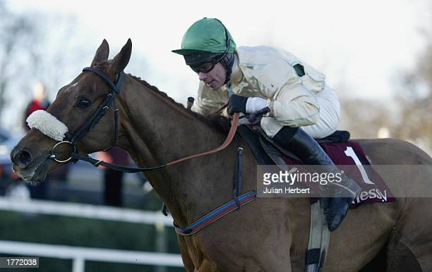 Timmy Murphy and Beef Or Salmon clear the last fence before going on to land The Hennessey Gold Cup Steeple Chase Race run at Leopardstown Racecourse...