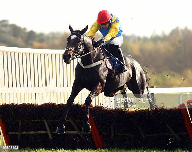 Timmy Murphy and Moleskin clear the last flight before wining The 0800 444040 For £25 Free Bet National Hunt Novices Hurdle Race Race run at Exeter...