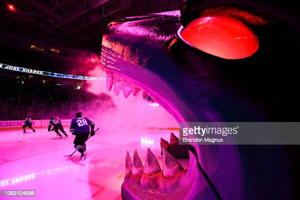 Timo Meier of the San Jose Sharks and the rest of the team takes the ice against the St Louis Blues at SAP Center on November 17 2018 in San Jose...