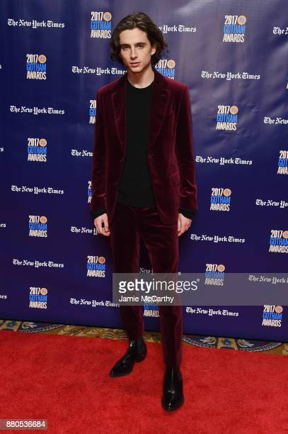 Timothée Chalamet attends the 2017 IFP Gotham Awards at Cipriani Wall Street on November 27 2017 in New York City