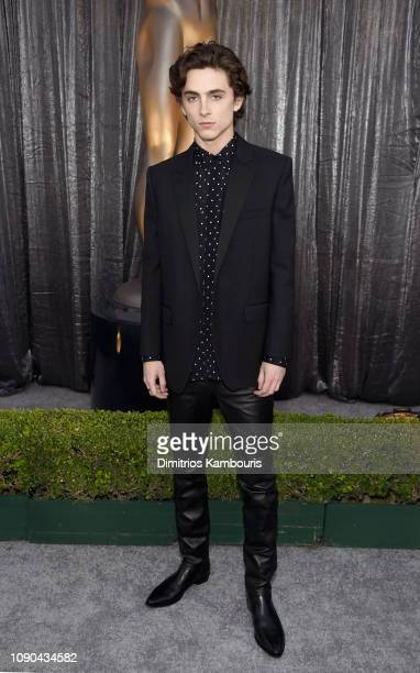 Timothée Chalamet attends the 25th Annual Screen Actors Guild Awards at The Shrine Auditorium on January 27 2019 in Los Angeles California 480595