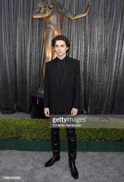 Timothée Chalamet attends the 25th Annual Screen ActorsGuild Awards at The Shrine Auditorium on January 27, 2019 in Los Angeles, California. 480595