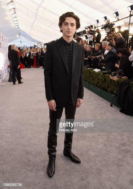 Timothée Chalamet attends the 25th Annual Screen ActorsGuild Awards at The Shrine Auditorium on January 27 2019 in Los Angeles California