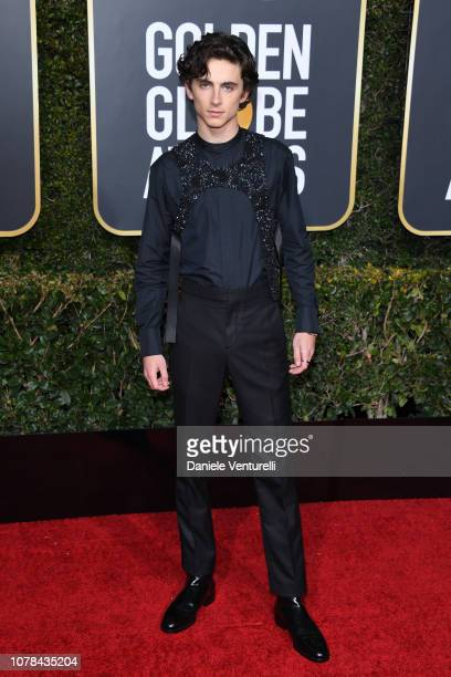 Timothée Chalamet attends the 76th Annual Golden Globe Awards at The Beverly Hilton Hotel on January 6 2019 in Beverly Hills California