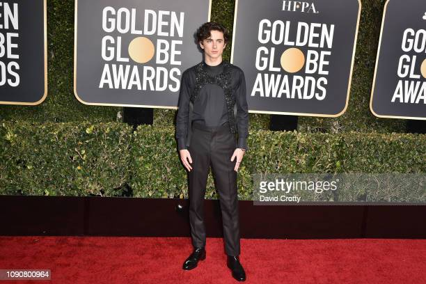 Timothée Chalamet attends the 76th Annual Golden Globe Awards at The Beverly Hilton Hotel on January 06 2019 in Beverly Hills California