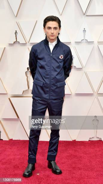 Timothée Chalamet attends the 92nd Annual Academy Awards at Hollywood and Highland on February 09 2020 in Hollywood California