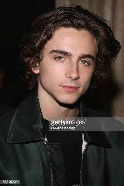 Timothee Chalamet attends Calvin Klein and The Cinema Society host the after party for Sony Pictures Classics' 'Call Me By Your Name' on November 16...