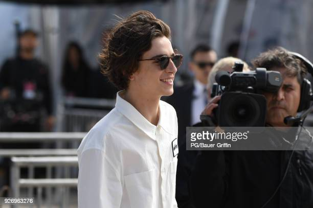Timothee Chalamet attends the 2018 Film Independent Spirit Awards on March 03 2018 in Los Angeles California
