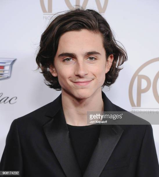 Timothee Chalamet attends the 29th Annual Producers Guild Awards at The Beverly Hilton Hotel on January 20 2018 in Beverly Hills California