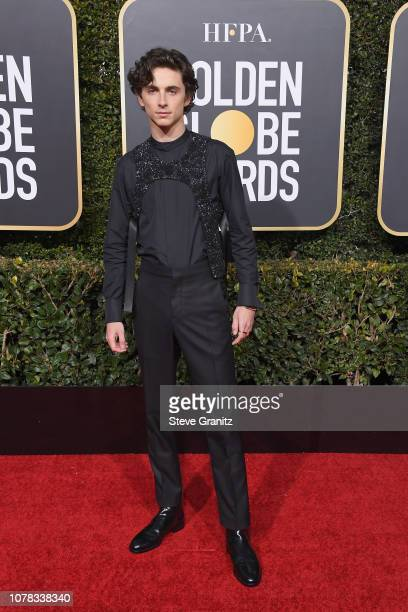 Timothee Chalamet attends the 76th Annual Golden Globe Awards at The Beverly Hilton Hotel on January 6 2019 in Beverly Hills California