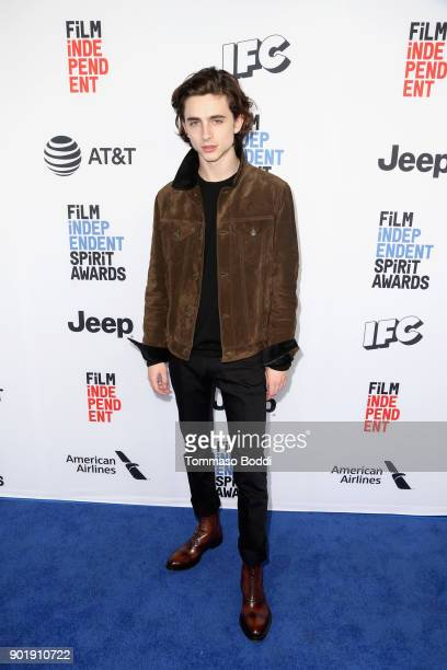 Timothee Chalamet attends the Film Independent Spirit Awards Nominee Brunch at BOA Steakhouse on January 6 2018 in West Hollywood California