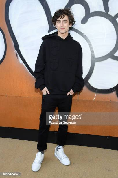 Timothee Chalamet attends the Louis Vuitton Menswear Fall/Winter 20192020 show as part of Paris Fashion Week on January 17 2019 in Paris France