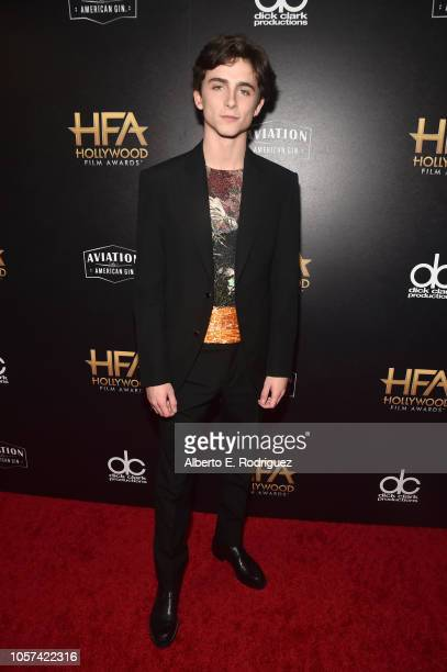 Timothee Chalamet Hollywood Supporting Actor Award recipient poses in the press room during the 22nd Annual Hollywood Film Awards at The Beverly...