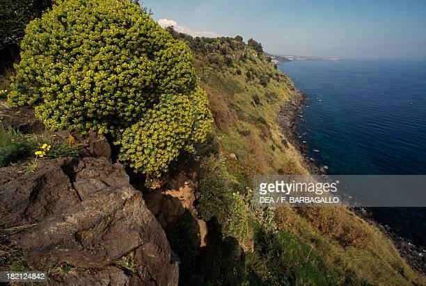 Timpa near Acireale Sicily Italy