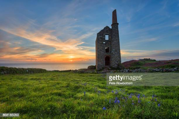 tin mine bluebells - cornwall england stock pictures, royalty-free photos & images