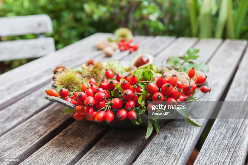 Tin plate of autumn harvest on wood : Stock-Foto