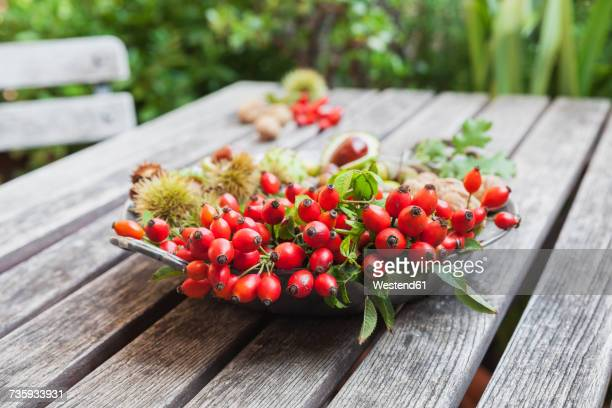 tin plate of autumn harvest on wood - dog rose stock photos and pictures