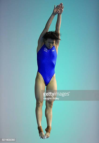 Tingmao Shi of China competes in the Women's 3m Semifinals during Day Three of the FINA/NVC Diving World Series 2016 at the Windsor International...