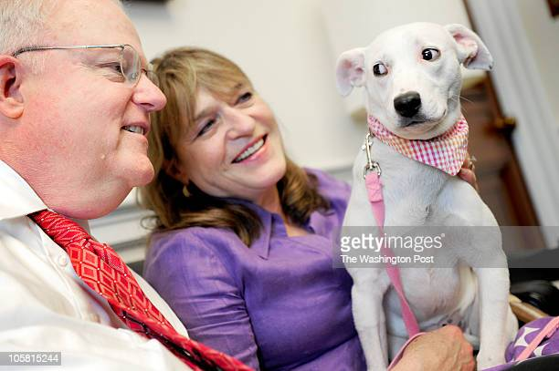 Tinker a female sevenishmonthold dalmatian mix is a bit wary of her owner Rep Jim Sensenbrenner and his wife Cheryl in his office in Washington DC on...