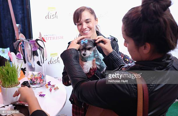 Tinkerbelle the Dog attends the celebration of the launch of Rachael Ray's Nutrish DISH with a Puppy Party on September 28, 2016 in New York City.
