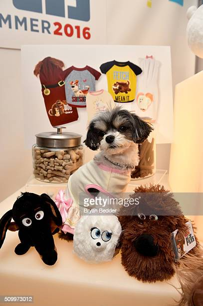 Tinkerbelle the Dog sits among PetSmart's exclusive pet collection during The Secret Life of Pets toy line reveal at Toy Fair on February 13 2016 in...