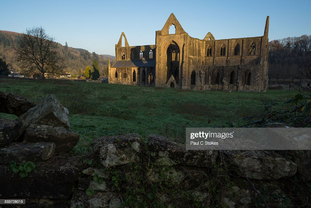 Tintern Abbey : Foto stock