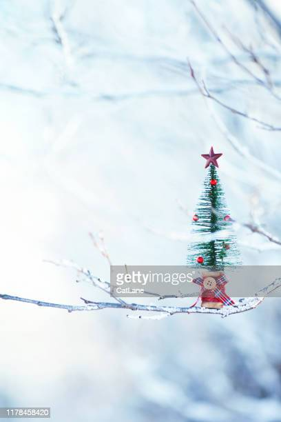 tiny christmas tree outdoors on snowy branches picture