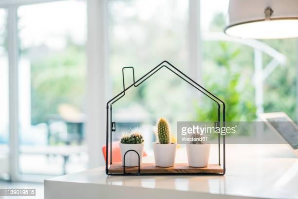 tiny house model with cacti inside - bens imóveis imagens e fotografias de stock